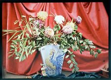 AUTOCHROME LUMIERE BOUQUET DE FLEURS PARIS 1912 PLAQUE VERRE PHOTO 13x18