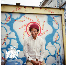 Toro y Moi - What for [New CD]