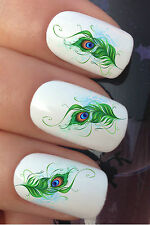 NAIL ART SET #613 x24 PEACOCK EYE FEATHERS CURLZ WATER TRANSFER DECALS STICKERS