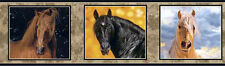 Beautiful Horse Portraits Wallpaper Border FREE SHIPPING