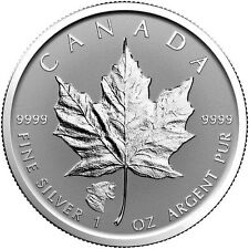 2017 Canadian Silver Maple Leaf  - Cougar - Reverse Proof 9999 - with Air Tite