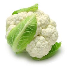 1g (approx 350) cauliflower seeds ERFURT valuable highly dietary vegetable Tasty