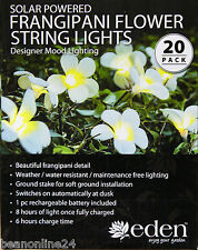 20 Piece LED Solar Frangipani Flower String Light Kit - Designer Mood Lighting