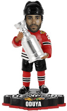 Chicago Blackhawks Johnny Oduya  Stanley Cup Champion BobbleHead 2013