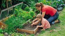 Kit de démarrage jardin potager BIO lot de Graines legumes semis plante fleurs