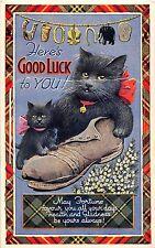 B89805 here s googl luck to you cat callander leporello  scotland