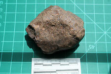 Meteorite G1-0942 - 122.81g IMPRESSIVE MATERIAL! ORIENTED SHIELD?? - BEAUTIFUL!!