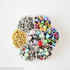 560pcs Multicolor Pearl brads Scrapbooking Card Making wedding Craft Box Brad
