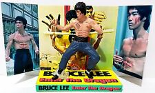 BRUCE LEE - ENTER THE DRAGON 105mm Action Figure & Custom Design Display Diorama