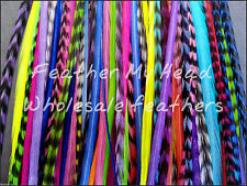Feather Hair Extensions 25 Pc Beautiful Assortment Of Colors Disocunted Cheap