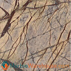 Rain Forest Brown Polished Floor and Wall Marble Tile