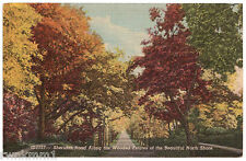 AK USA Post Card Sheridan Road Along the Wooded Estates vor 1945