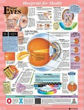 BLUEPRINT FOR HEALTH YOUR EYES CHART POSTER (66x51cm) ANATOMICAL NEW EDUCATIONAL