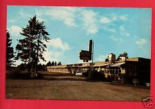 ROSCOMMON  MI  FENDER'S MOTEL JIM ERMA OLD CAR LAWN CHAIR    POSTCARD