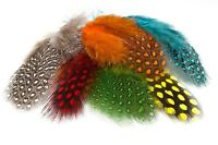 Mixed Nail art Feathers Colours Guinea fowl Crafts jewellery making