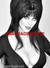 "Cassandra Peterson ""Elvira"" ""Mistress of the Dark"" SEXY"" ""Pin-Up"" PHOTO! #(8b)"