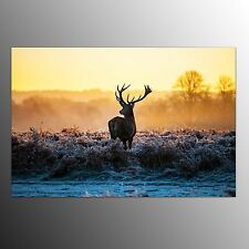 Canvas Wall Art Animal Canvas Prints For Home Decor Elk-No Frame