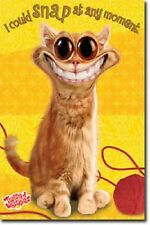TWISTED WHISKERS CAT SNAP AT ANY MOMENT POSTER PRINT 22x34 NEW FREE FAST SHIP
