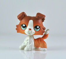 Cute Littlest Pet Shop LPS Brown White Collie Puppy Dog Blue Eyes Child  #1542