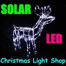 Solar LED Deer 3D STANDING Outdoor Display Christmas Reindeer 100 White Lights