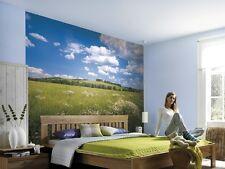Mural de Pared Foto Wallpaper Prado Verde Azul naturaleza Dormitorio Decoración Arte 368x254cm
