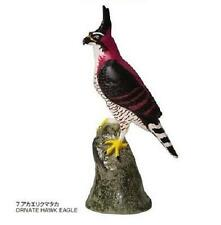 RARE Kaiyodo Colorata Raptor Ornate Hawk Eagle Figure Japan Only Retired