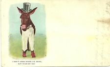 I dont know where im going but im on my way used 1906 donkey postcard