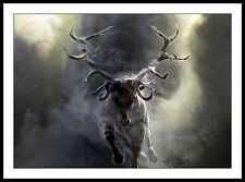 Deer Stag Antlers Raging FRAMED ART PRINT PICTURE