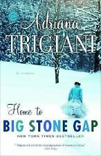 Home to Big Stone Gap: A Novel Big Stone Gap Novels)