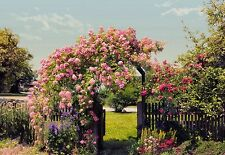 ROSE GARDEN Photo Wallpaper Wall Mural FLOWERS ROSES TREES  368x254cm