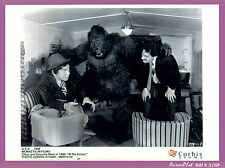"PHOTO DE PRESSE CINÉMA : THE MARX BROTHERS, FILM "" AT THE CIRCUS "", MONKEY-K2"