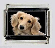 LONG HAIR DACHSHUND dog Italian PHOTO 9mm CHARM for nomination link Bracelets