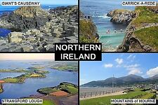 SOUVENIR FRIDGE MAGNET of NORTHERN IRELAND