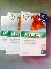 Bayer Advantage for Dogs over 55 Pounds