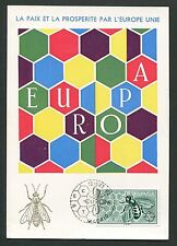 SPAIN MK 1962 EUROPA CEPT BIENE BEE MAXIMUMKARTE CARTE MAXIMUM CARD MC CM d3424