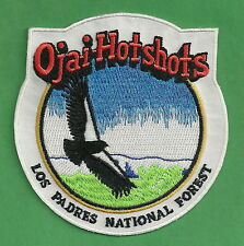 U.S. FOREST SERVICE LOS PADRES NATIONAL FOREST OJAI HOT SHOTS FIRE PATCH