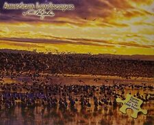 Jigsaw puzzle National Park Bosque del Apache Refuge 1000 piece NEW Made in USA