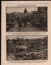 WWI Elephant Maubeuge Nord France Deutsches Heer Germany 1916 ILLUSTRATION