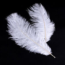 20 X LARGE Ostrich FEATHERS 25 - 30 CM CARD MAKING EMBELLISHMENTS white