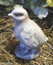 Latex only head up bird mold plaster concrete casting garden mould