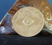 2 Year Narcotics Anonymous NA Medallion Coin Chip 1996 WSO Series Token Sobriety