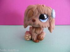 petshop chien bobtail / sheepdog dog N° 1077