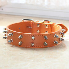2 Rows Spiked Studded Leather Dog Collar Medium Large Dog Collar Pitbull Terrier