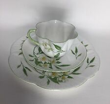 Shelley Syringa Trio Cup, Saucer and 8 Inch Plate