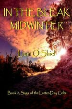 In the Bleak Midwinter by Liam O'Shiel (Paperback)