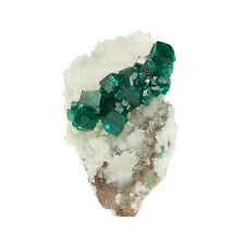 SUPERB CLASSIC EMERALD GREEN DIOPTASE CRYSTALS on matrix - Tsumeb TF179 !!