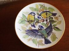 COLLECTABLE VINTAGE DISPLAY PLATE URSULA BAND BLUE TITS TIRSCHENREUTH 1985
