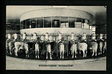 New Jersey NJ postcard Plainsboro, Walker Gordon Rotolactor Milk Dairy Farm Cow