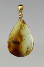 Fossil Large CADDISFLY BALTIC AMBER Gold Plated Silver Drop Pendant 4g p0726-11