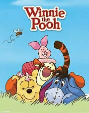 Winnie the Pooh : Characters - Mini Poster 40cm x 50cm (new & sealed)